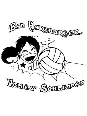 20080423_1498280971_volley_logo_sw1.jpg